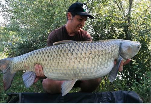 pesca amur 1.jpg